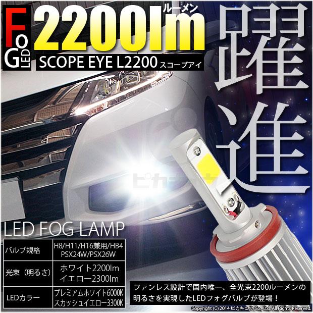 SCOPE EYE L2200 LED�ե������å�